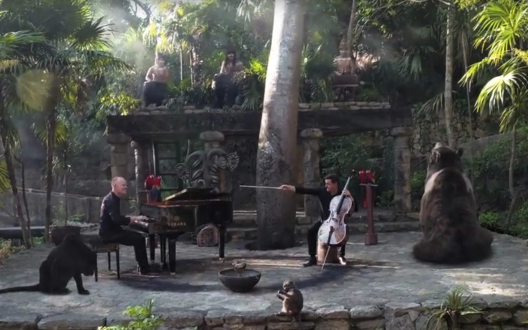 "The Piano Guys ""The Jungle Book"""