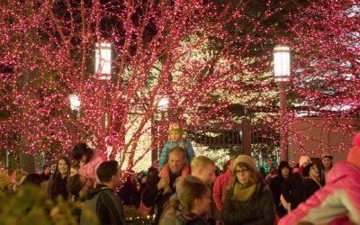 Celebrate the Christmas Season on Temple Square in Salt Lake City Utah