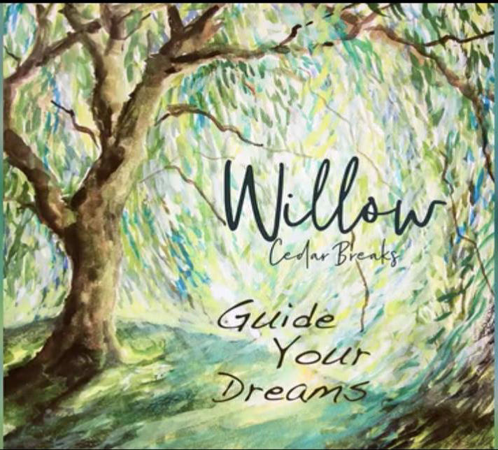 Tender Ballad, Willow, by Cedar Breaks Wins Awards Across The Country