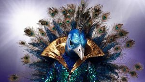 The Masked Singer - The Peacock